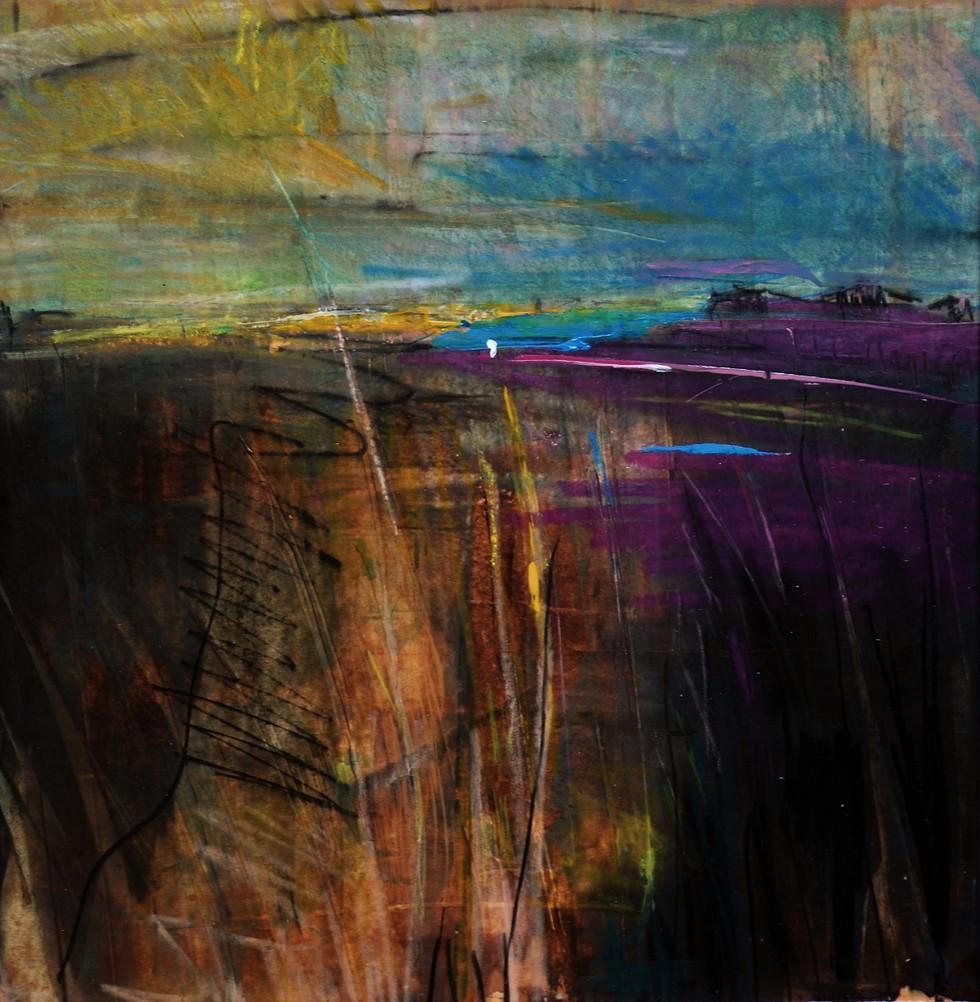 Cape Cod Artist Residency | Kim McAninch