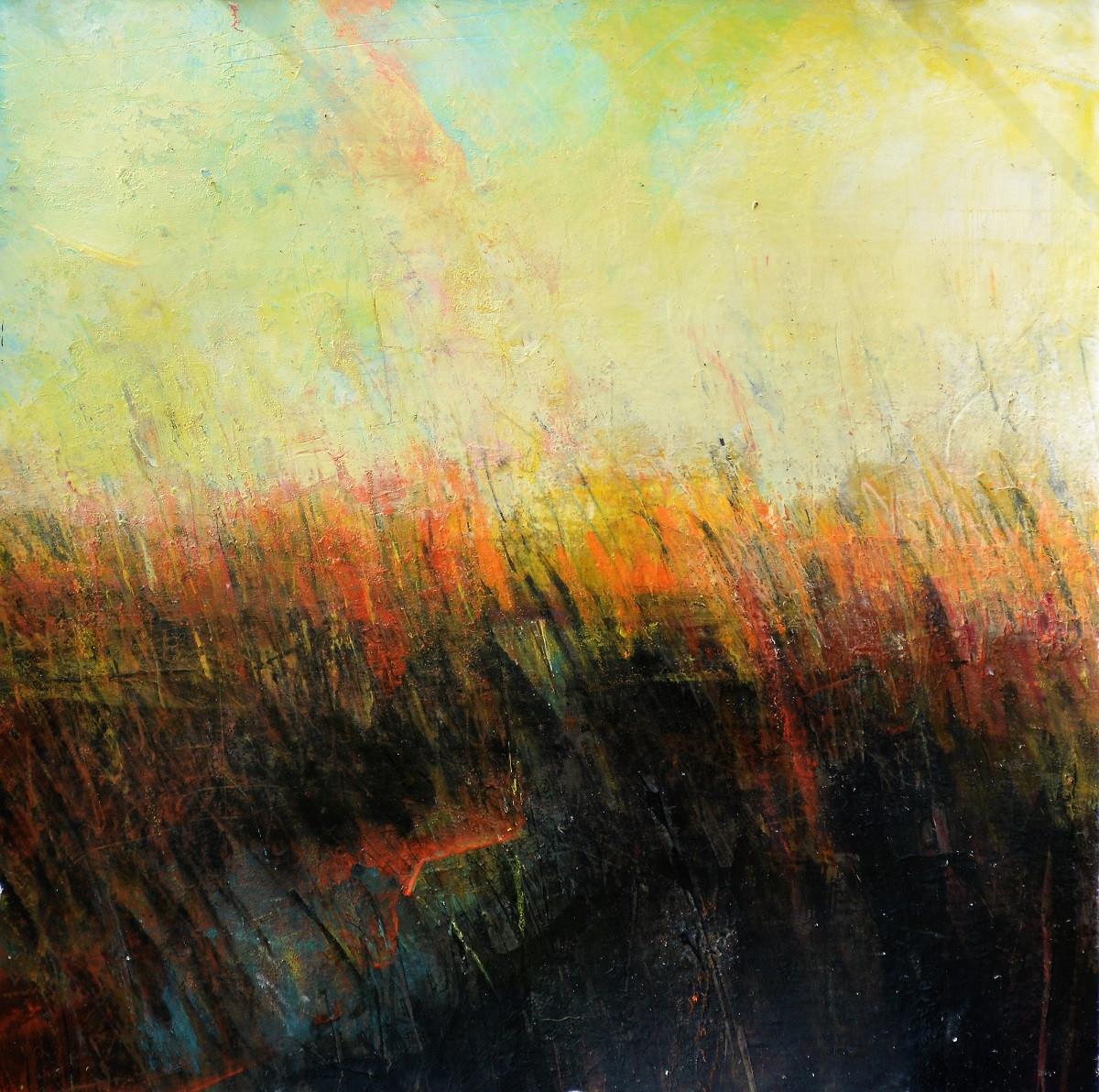 Dunes Artist Residency | Kim McAninch