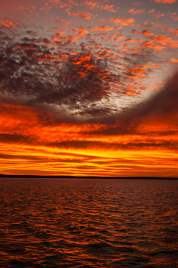 Sharks Bay Sunset