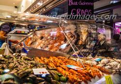Blue-Swimmer Crabs.jpg