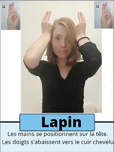 Lapin.png
