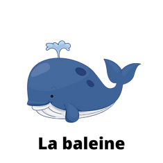 La baleine.png