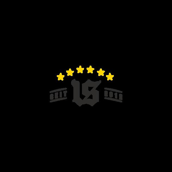 Verruckt-Logo_Fundo Claro 5.png