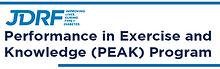 Peak-T1D-image-rect.png