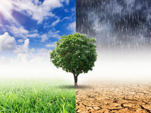 The 10 start-ups confronting climate change head-on