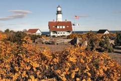 bill menzel - lighthouses 02.jpg