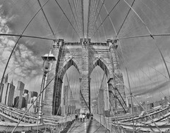 bill menzel - new york city 09.jpg
