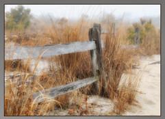 bill menzel - landscape 22.jpg