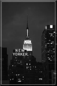 bill menzel - new york city 12.jpg