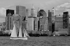 bill menzel - new york city 04.jpg