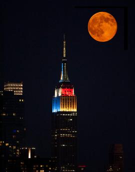 bill menzel - new york city 11.jpg
