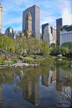 bill menzel - new york city 13.jpg