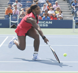 bill menzel - serena williams 7.jpg