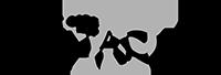 logo_22959623a52322e4d46c04effe41f6e5_2x