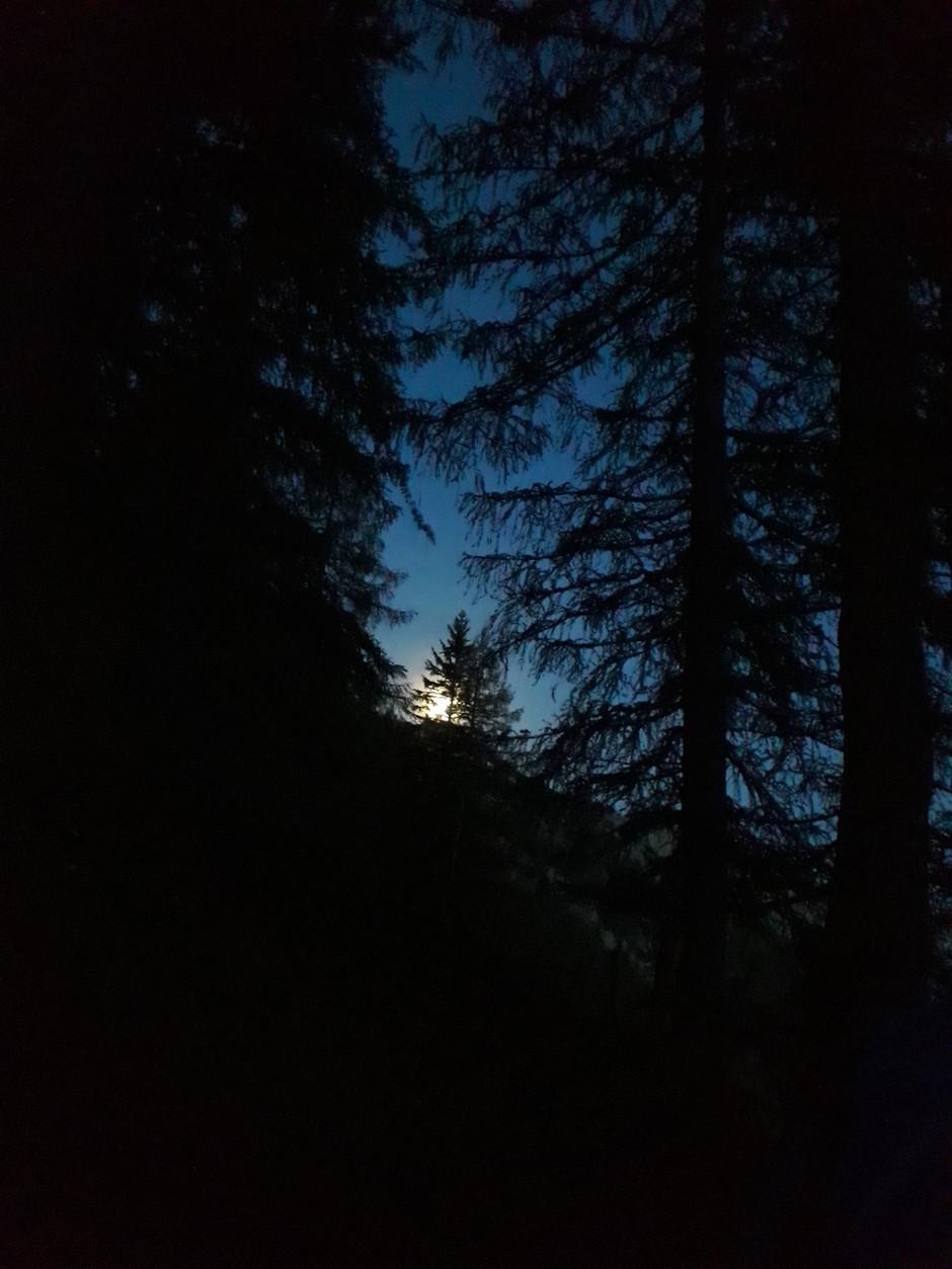 Erste WildnisNacht Session: Mückenparty im Toten Gebirge