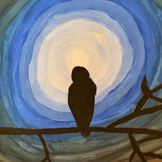 An owl desiring for freedom