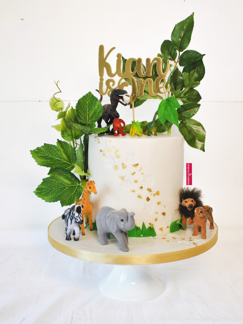 Dinosaur & Jungle Animal