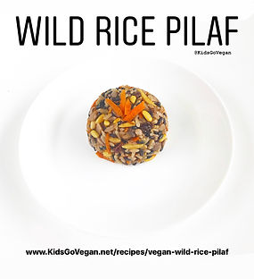 Vegan Wild Rice Pilaf