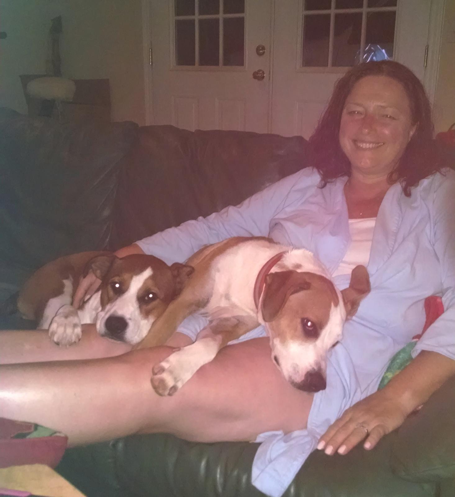 Fenway & Sadie Snuggle Time