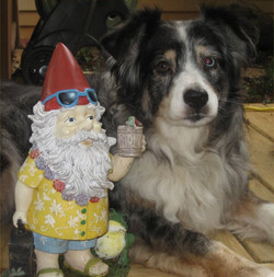 Maddie & The Party Gnome