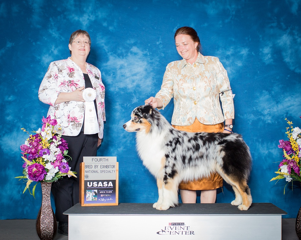 2015 AKC Nationals 4th BBEx