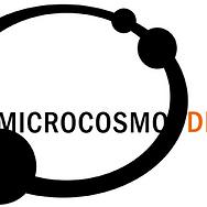 microcosmo_dischi_big_15515.png