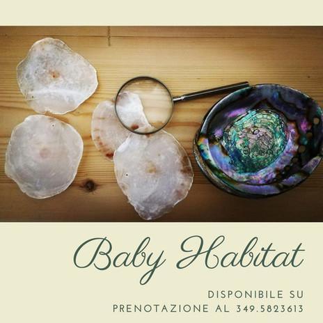 Baby Habitat