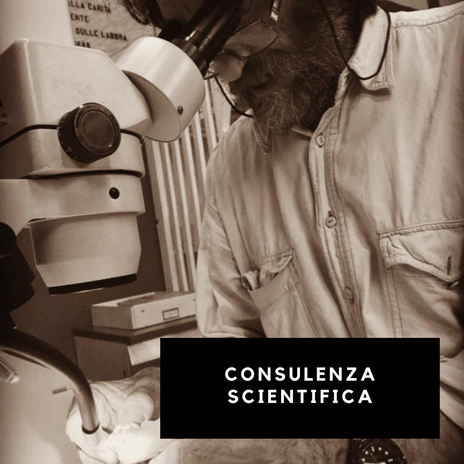Laboratori scientifici (3).png
