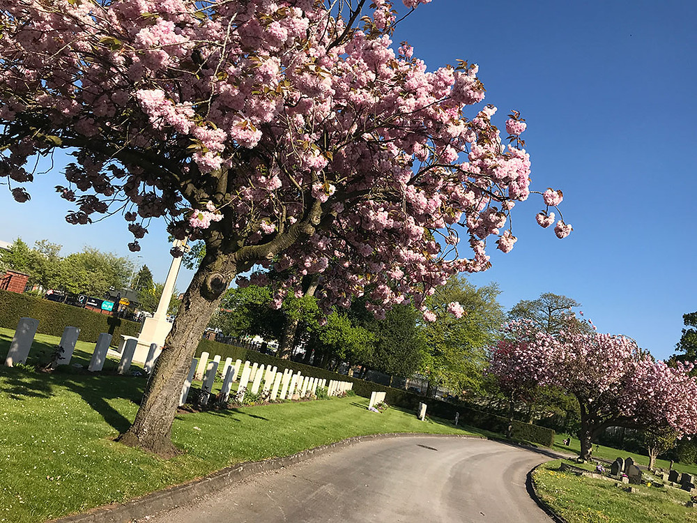 Eccleshall Road Cemetery Stafford