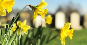 Spring has sprung at Stafford Crematorium