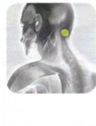 Disc Therapy | Disc Placement | Head Pain | GB-20