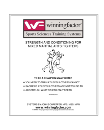 Mixed Martial Arts Training System