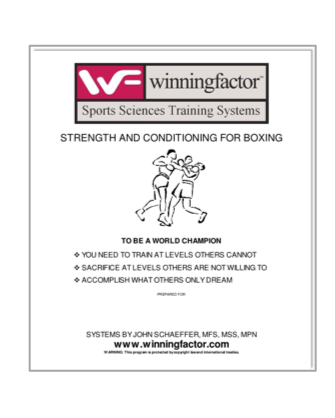 Boxing Training System
