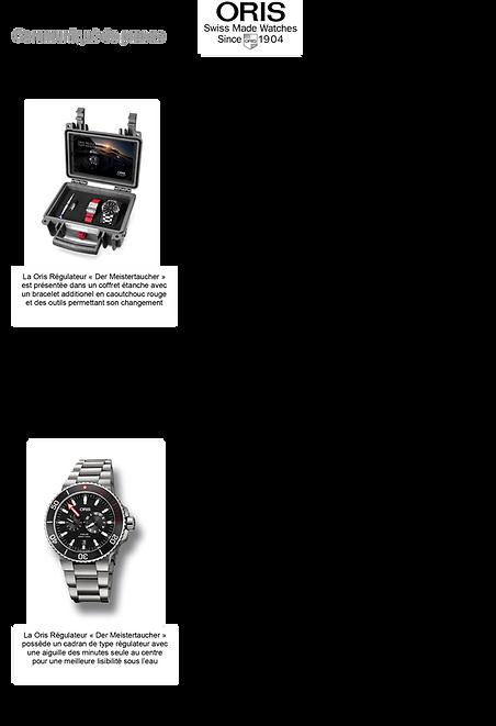 montre pour homme oris régulateur automatique