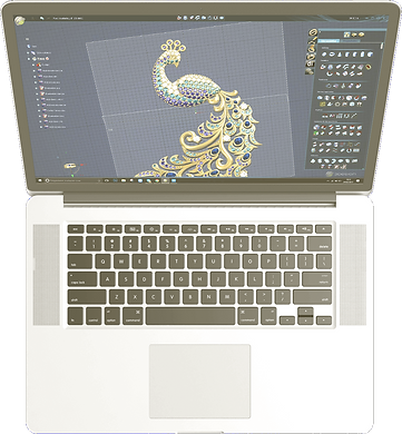 peacock-mac-1000x1081_modifié.png