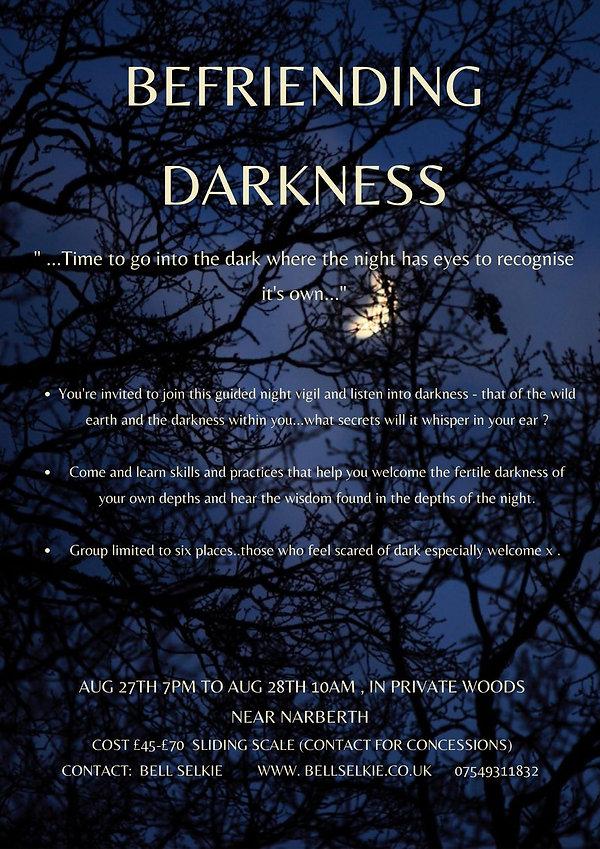 befriending the dark.jpg