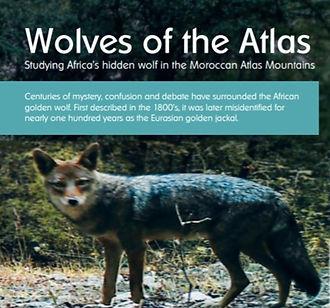 WolvesOfAtlas_edited.jpg