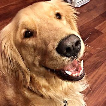 Bella smiling