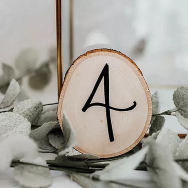 Rustic Pine Tree Numbers