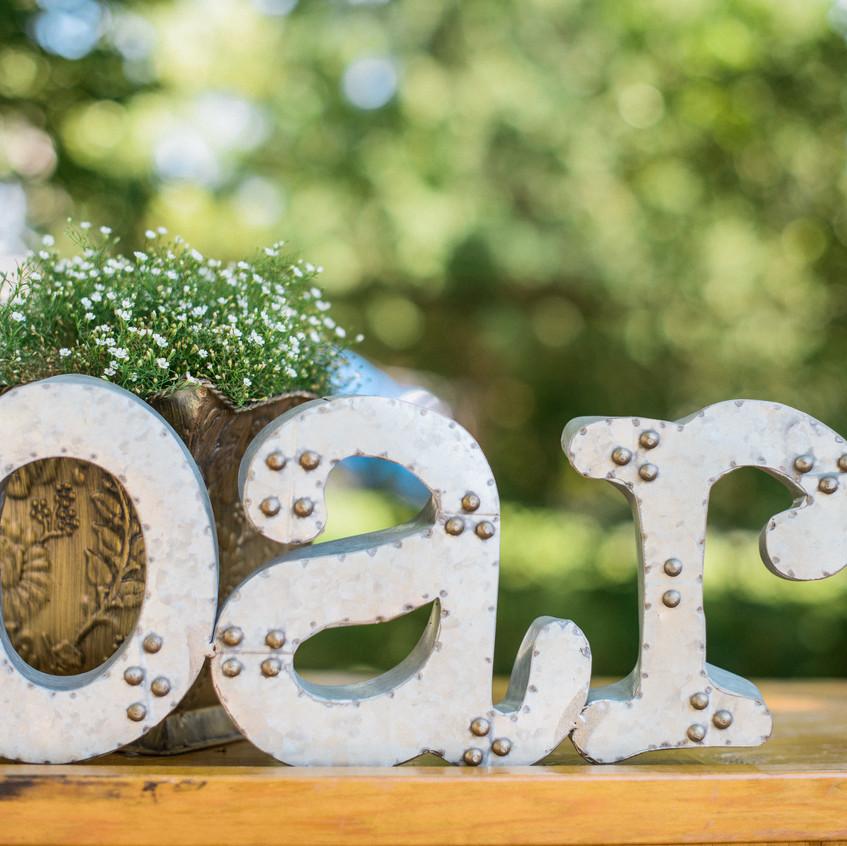 Alexandra-Elise-Photography-Ali-Reed-Film-Wedding-Photographer-Alyssa-Zach-Reception-020