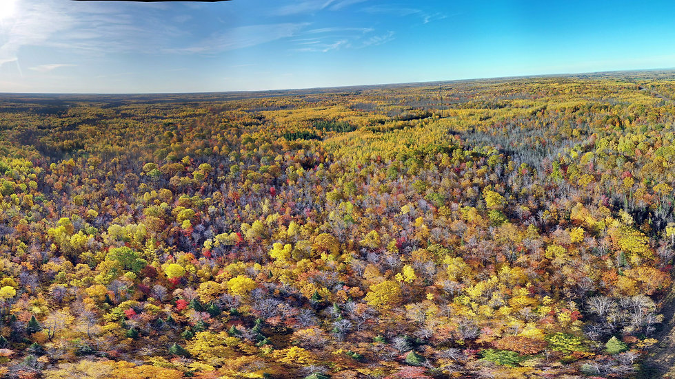 12-acres of Land in Douglas County WI!