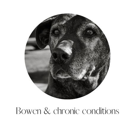 Bowen & Chronic conditions