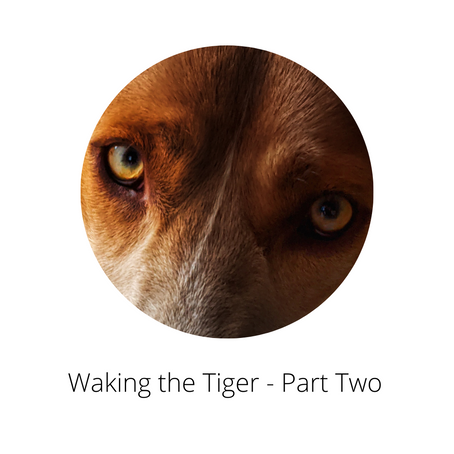 Waking the Tiger - Part two