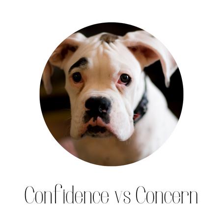Confidence vs Concern
