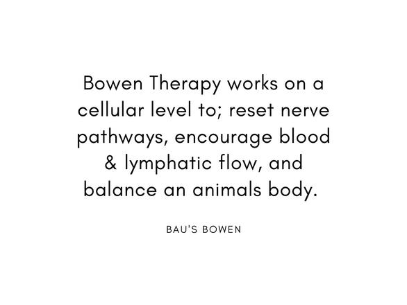 bowen balance.png