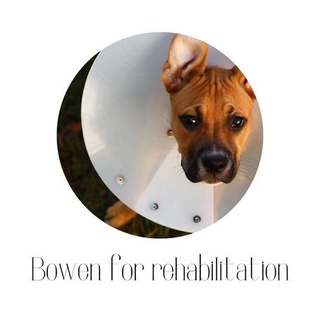 Bowen for rehabilitation