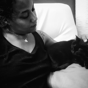 🐾 L'instant F(o)urbaby de... Chanel : prendre soin de son chat lorsqu'il vieillit