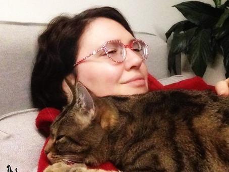 """🐾 Histoire(s) de chat(s) : le témoignage de Marie - l'adoption des """"streuminous"""" 🐾"""