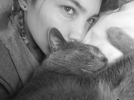 🐾 Histoire(s) de chat(s) : l'histoire d'Haïro alias Bibou (par Sandra) 🐾