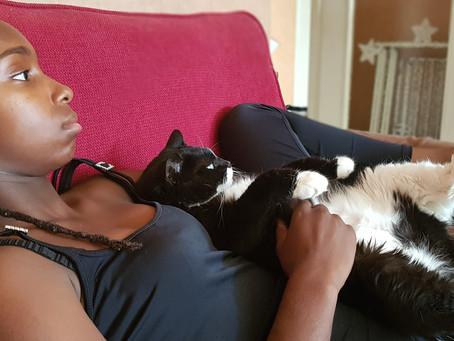 🐾 Histoire(s) de chat(s) : l'histoire d'amitié entre Laya et moi (par Kaïna) 🐾